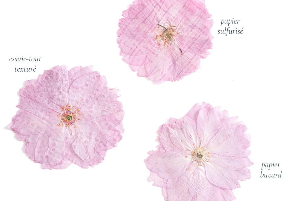 fleurs pressees technique