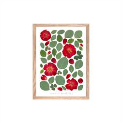 herbier-rosa-bois.png