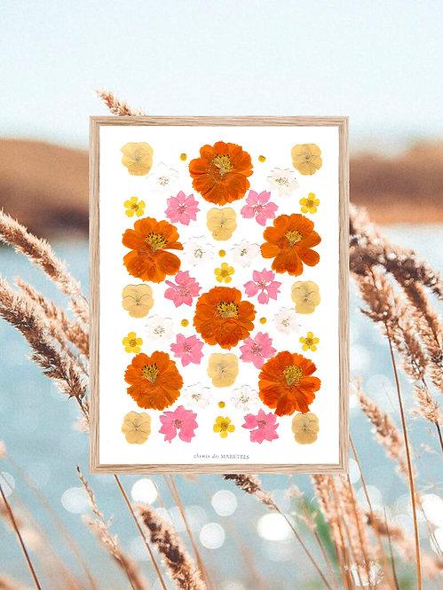 herbier de fleurs oranges et roses