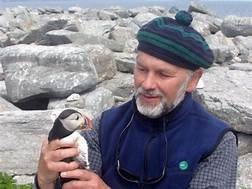 Dr. Stephen Kress wearing a knit cap and fleece vest looks at the puffin he holds in his hands.