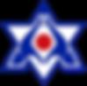 Bitran martial arts logo raanana