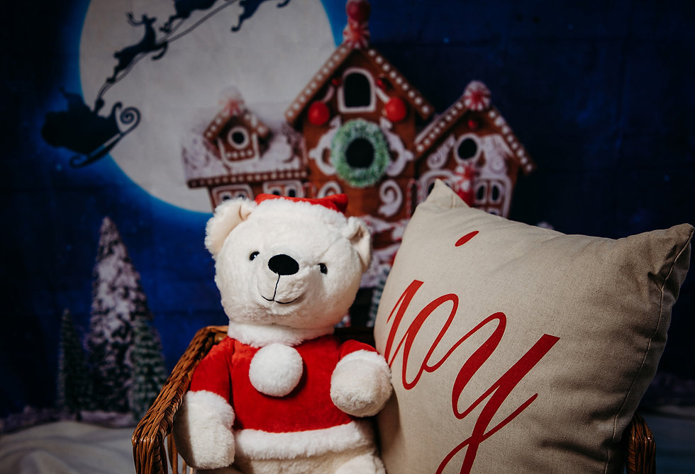 2021 Christmas Captured by Amanda.jpg