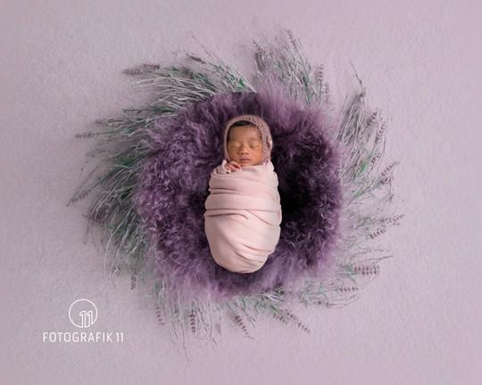 Neugeborenenfotografin Solothurn Bern