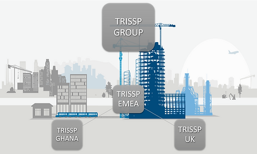 TRISSP GROUP STRUCTURE 2.png