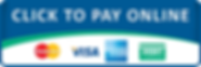 Payment option button.png