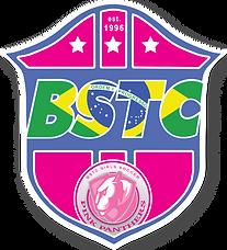 Girls Soccer League