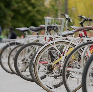 Bike Rentals-01.jpg