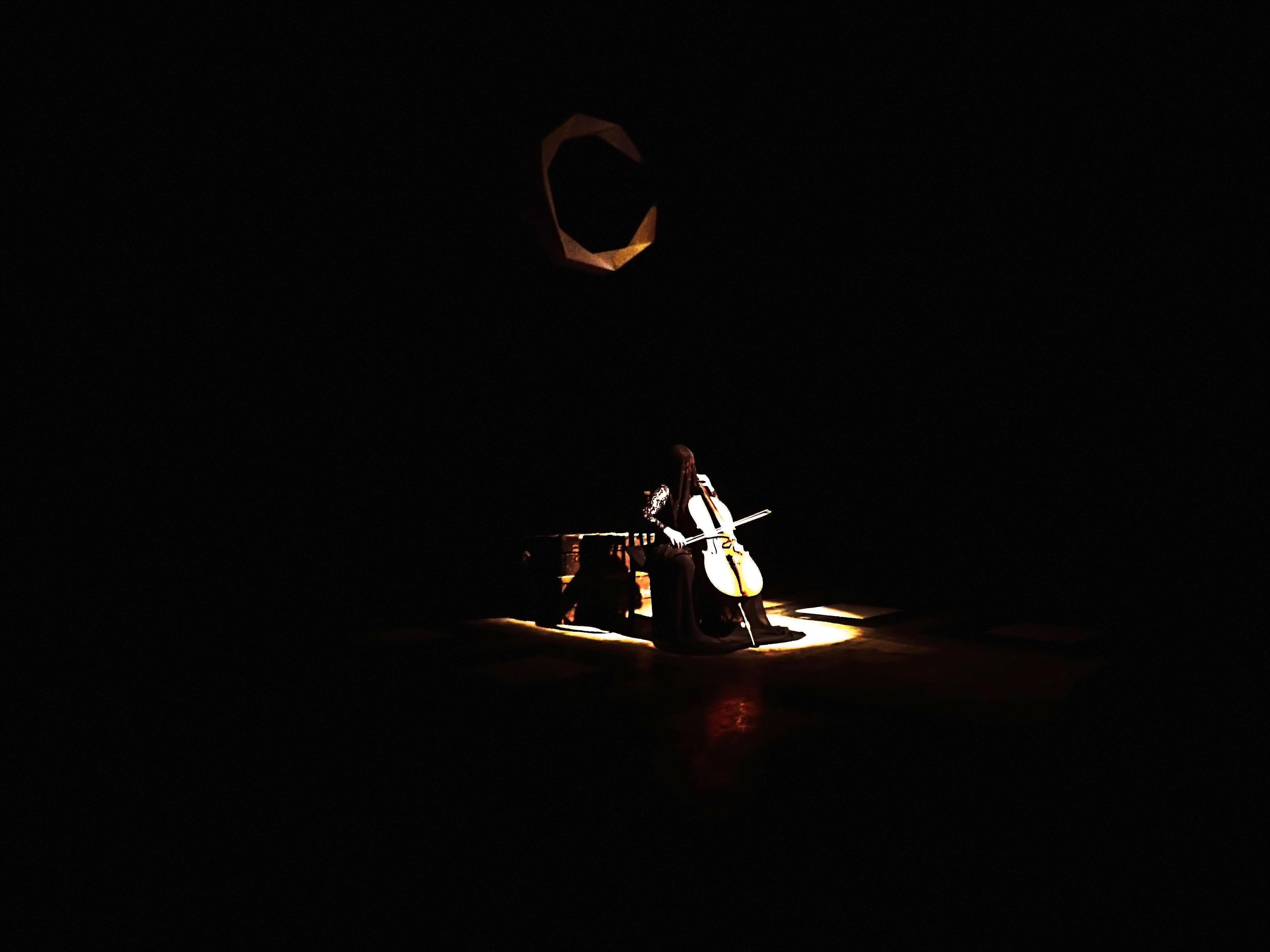 The Celloist