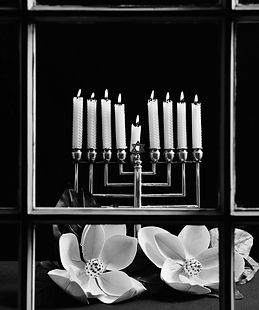 """Magnolias and Menorahs,"" Bill Aron.jpg"