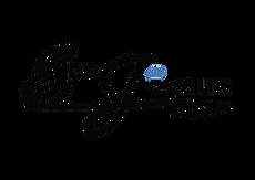 logo Ecojoyaux