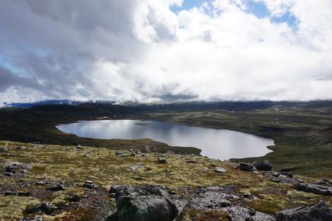 Hallingskarvet national park