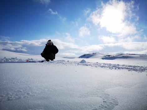 Icefishing Hardangervidda