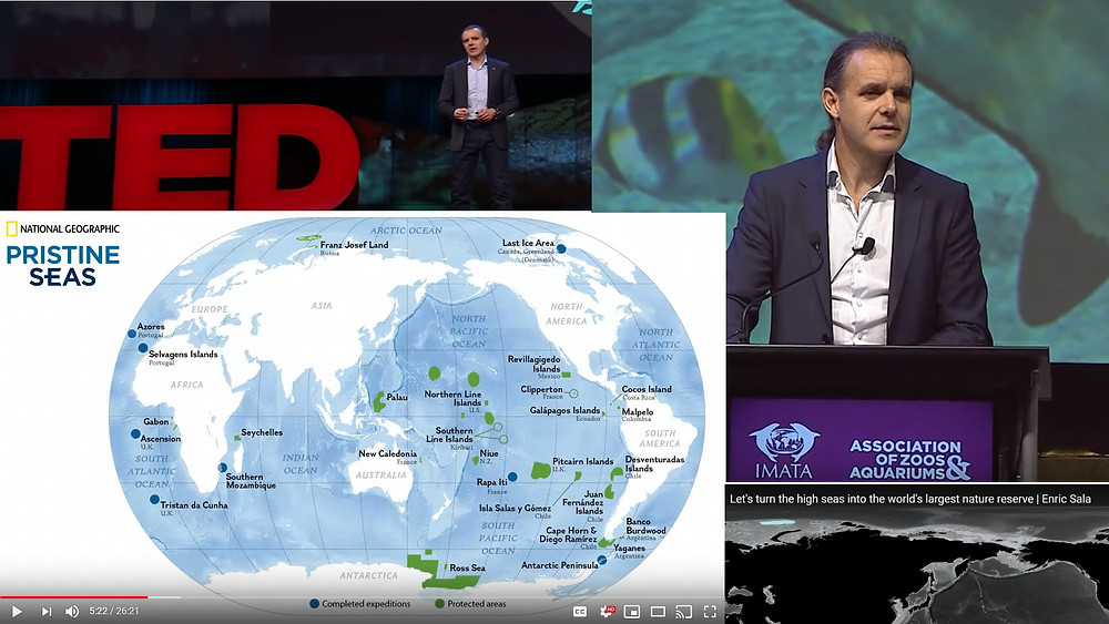 Enric Sala TED talks