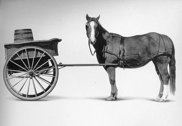 cart_before_the_horse.png