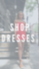 shop what's new (3).png