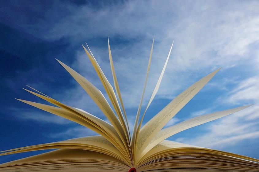 book heaven.jpg
