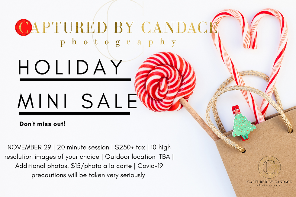 Copy of holiday sale.png
