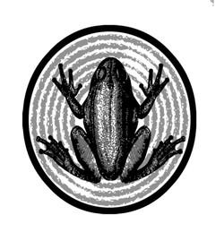 Spring Fed Frog Sticker