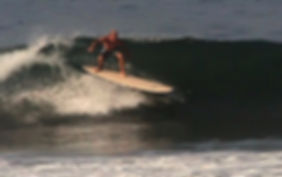 Dolsey PC Woody epoxy and wood  surfboard ,for  surfing entry to performance boarding. Private label available . 800 969 7473