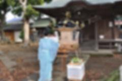 晩香坡 櫻會神輿 完成式典