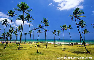 Praias Salvador=Jardim de Alah