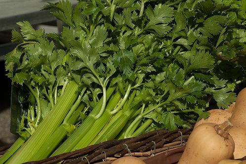 Celery 4 Pack/$3.49