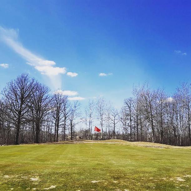 golf8.jpg