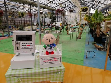 静岡市の内牧パパイヤ農園様で運用実験開始