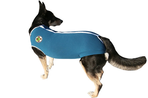 Recovery Pet Jacket DOG