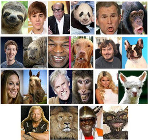 Celebrities that look like animals, who do you think looks most alike??