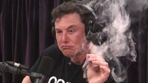 Elon Musk smokes a blunt of weed with Joe Rogan