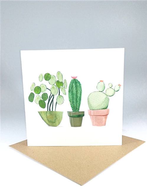Succulent Plants no.1 Greetings Card