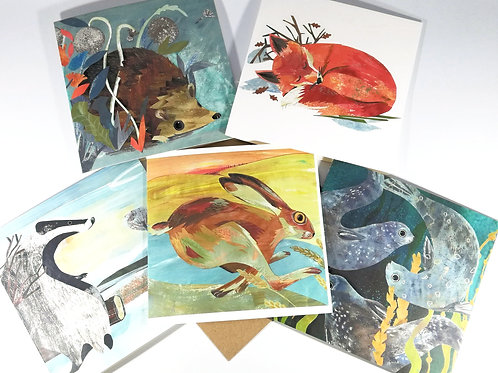 Wild Nature of  5 Greetings Cards