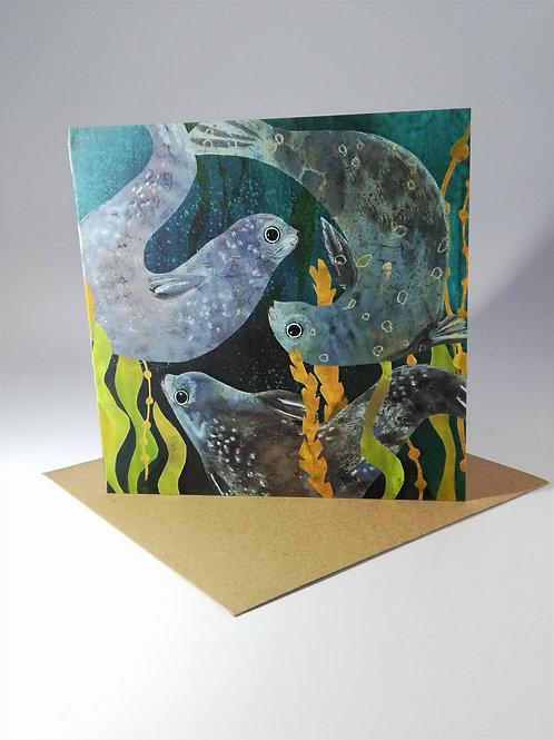 Three Seals Greetings Card