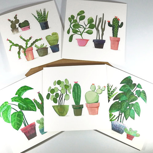Succulents Pack of  5 Greetings Cards