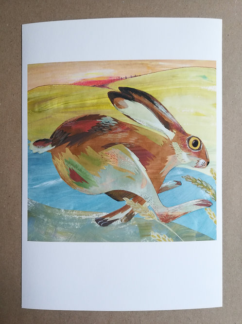 Hare Signed Print