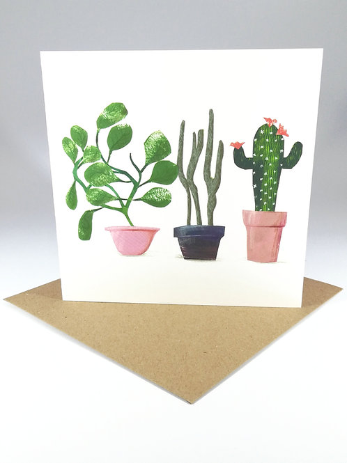 Succulent Plants no.4 Greetings Card