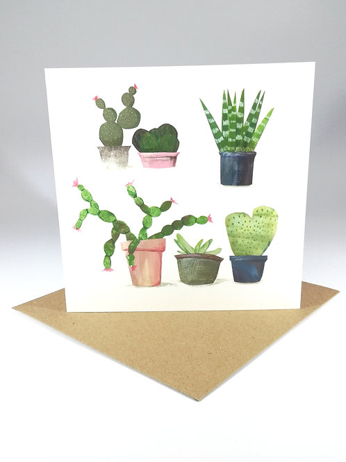 Succulent Plants no.2 Greetings Card