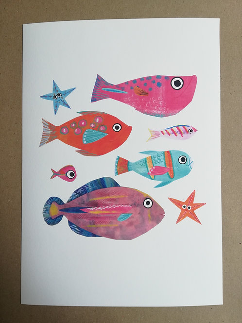 Colourful Fish Signed Print