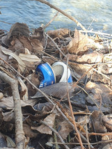 Beer Can In The Nature