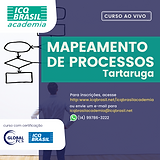 Mapeamento de Processo - Tartaruga