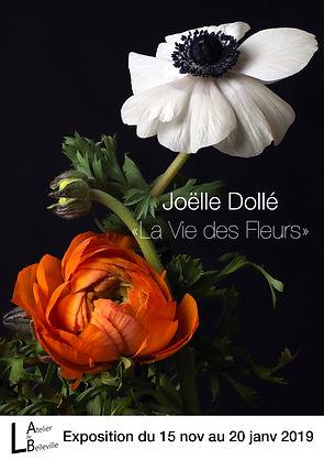 Exposition_Joelle_DOLLE_Recto_haute_défi