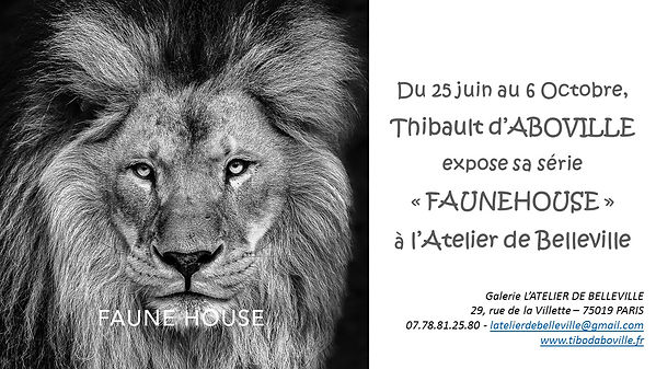 Exposition Thibault d'Aboville Annonce e
