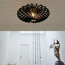 Plafondlampen en wandlampen