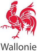 1200px-Logo_Wallonie_edited.jpg