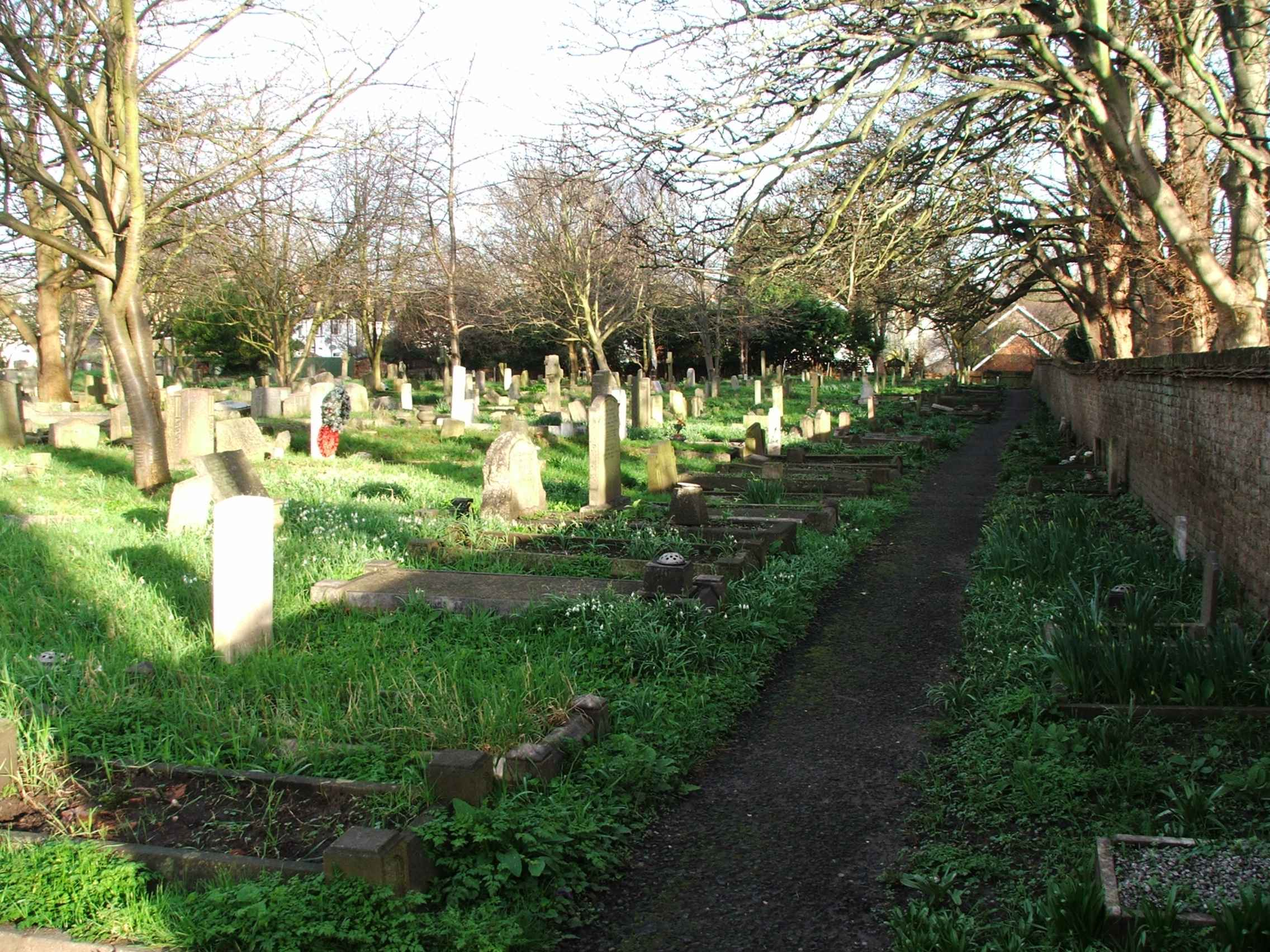New Graveyard