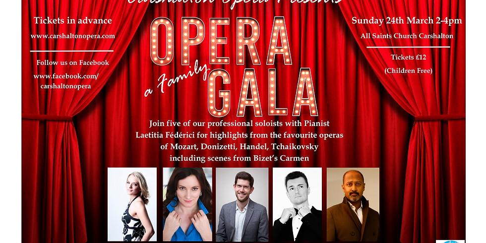 Opera Gala (1)
