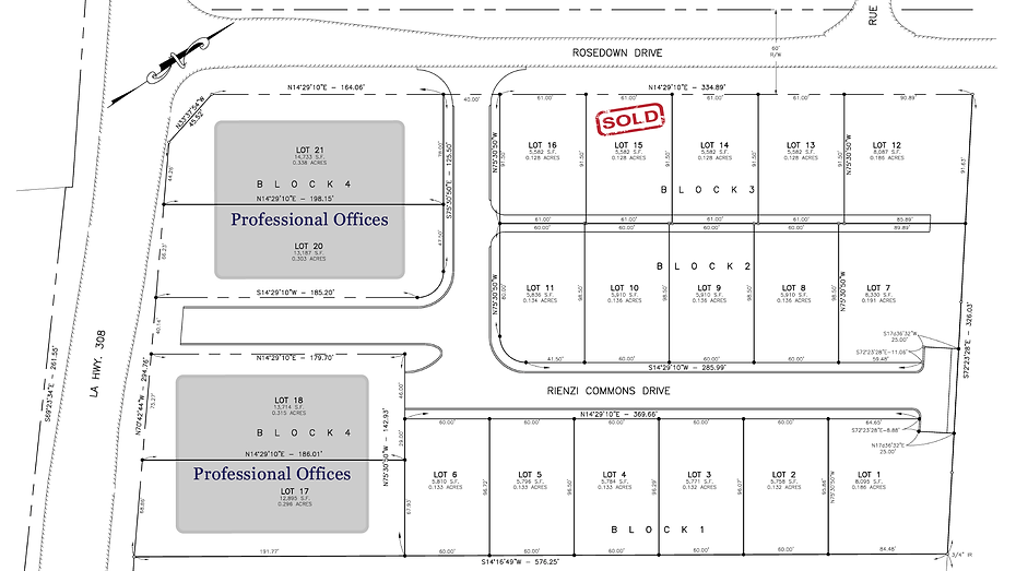 Rienzi Plat with professional offices-01