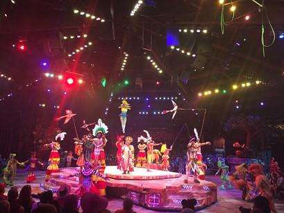 The best show in each Walt Disney World® Theme Park