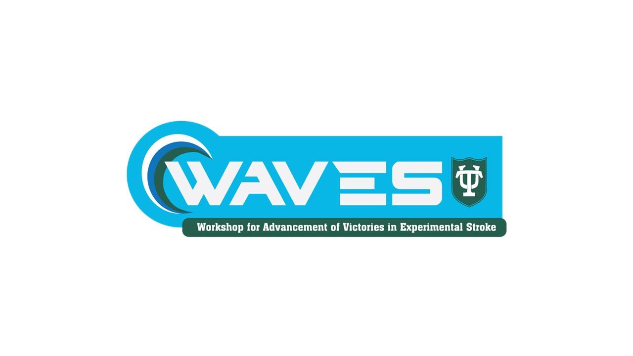 Tulane Waves logo.jpg